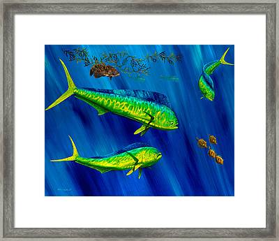 Peanut Gallery Framed Print by Steve Ozment