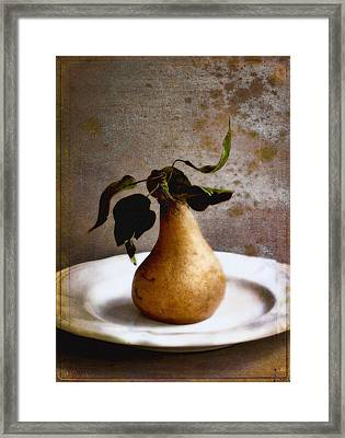 Pear On A White Plate Framed Print