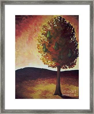 Pear Tree Framed Print by Samantha Black