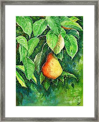Pear Framed Print by Zaira Dzhaubaeva