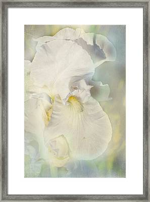 Framed Print featuring the photograph Pearl by Elaine Teague