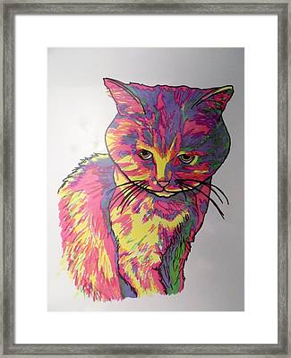 Pearl Cat Framed Print by Mary Sperling