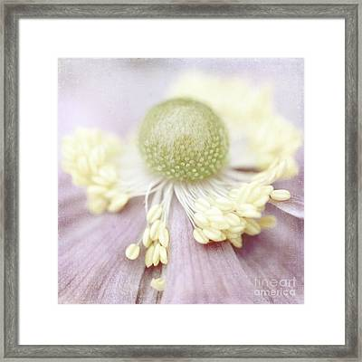 Pearl Framed Print by Uma Wirth