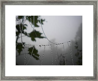 Pearls From Heaven Framed Print by Diannah Lynch