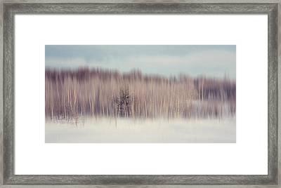 Pearly Winter. Impressionism Framed Print by Jenny Rainbow
