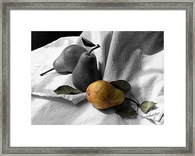 Framed Print featuring the photograph Pears - A Still Life by Terri Harper