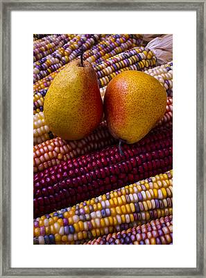 Pears And Indian Corn Framed Print