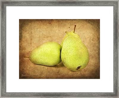 Pears Framed Print by Barbara Orenya