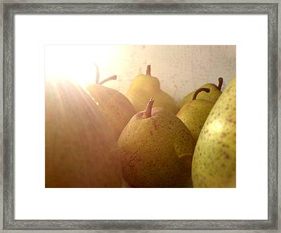 Framed Print featuring the photograph Pears by Lucy D
