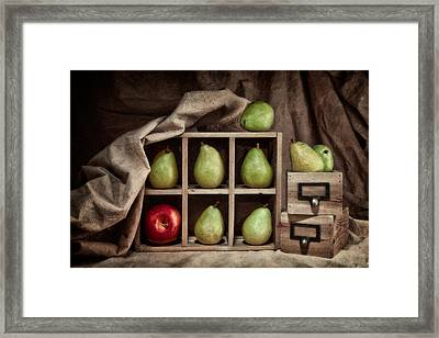 Pears On Display Still Life Framed Print