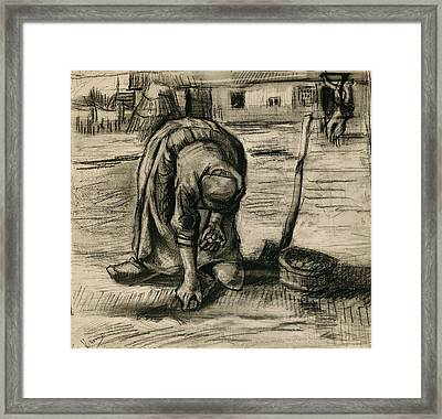 Peasant Woman Planting Potatoes Framed Print by Vincent Van Gogh