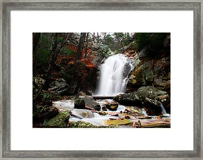 Peavine Falls In Autumn Framed Print by Shelby  Young