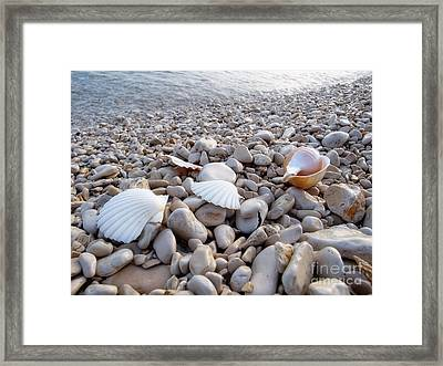 Pebble Beach Framed Print by Sinisa Botas
