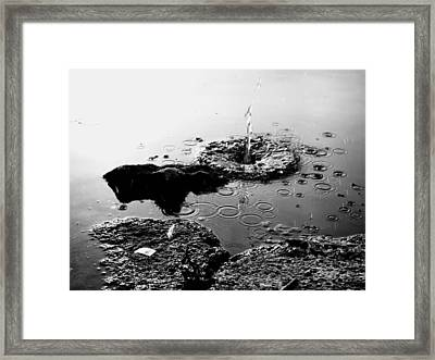 Pebble Splash Framed Print by David Stewart