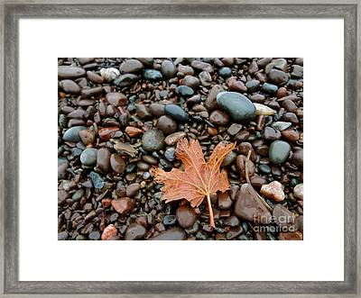 Pebbles Framed Print by Jacqueline Athmann