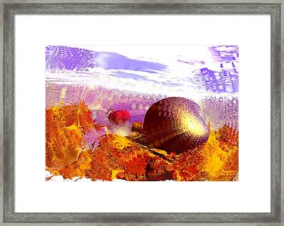 Pebbles On A Beach Framed Print