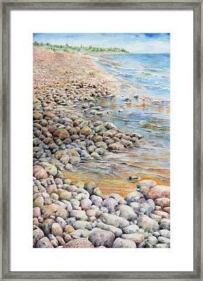 Pebbley Beach Framed Print by Liz  Lamb
