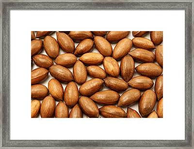 Pecan Nuts Framed Print