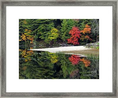 Peck Pond Autumn Reflections Ix Framed Print