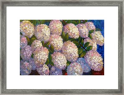 Peegee Hydrangeas Framed Print
