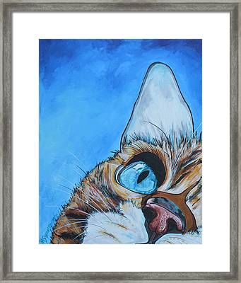 Peek A Boo Framed Print by Patti Schermerhorn