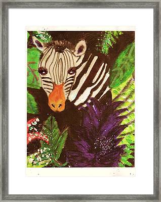 Peek-a-boo Zebra With Sparkles Framed Print by Anne-Elizabeth Whiteway