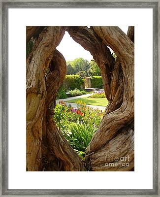 Framed Print featuring the photograph Peek At The Garden by Vicki Spindler