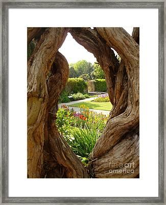 Peek At The Garden Framed Print by Vicki Spindler