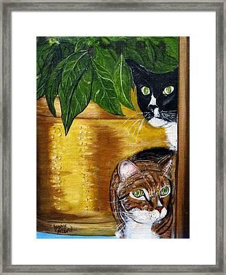 Peeping Tommy Framed Print by Ecinja