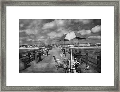 Peering  Framed Print by Betsy Knapp