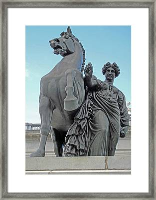 Pegasus Tamed Framed Print by Barbara McDevitt