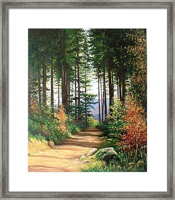 Peisaj Framed Print