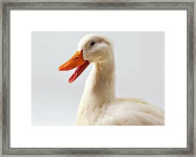 Pekin Ducks 1 Framed Print by Lanjee Chee