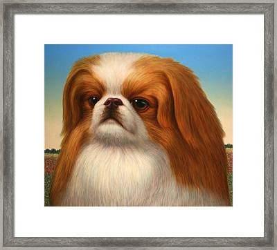 Pekingese Framed Print by James W Johnson