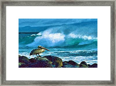 Pelican And Surf Framed Print by John Samsen