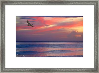 Framed Print featuring the photograph Pelican At Sunset by Mariarosa Rockefeller