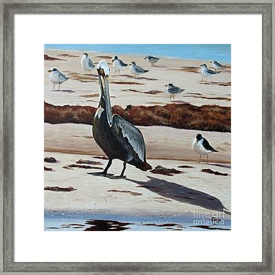 Framed Print featuring the painting Pelican Beach by Jimmie Bartlett