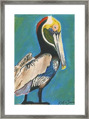 Pelican Blue Framed Print