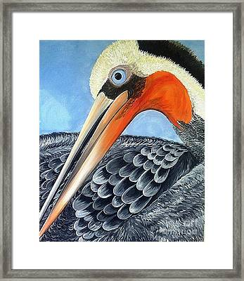 Pelican Framed Print by Chrissy Neelon