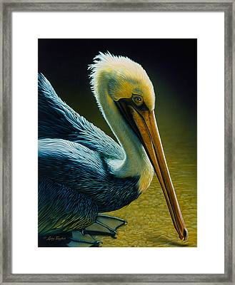 Pelican Detail Framed Print by Larry Taugher