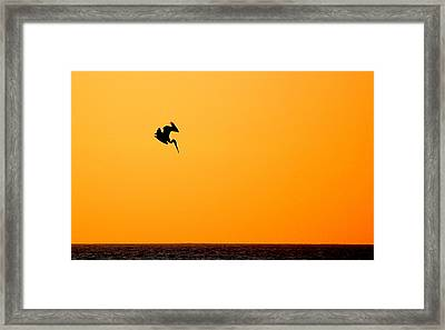 Framed Print featuring the photograph Pelican Diving At Sunset by AJ  Schibig
