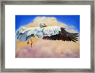 Pelican In The Clouds Framed Print by Phyllis Beiser