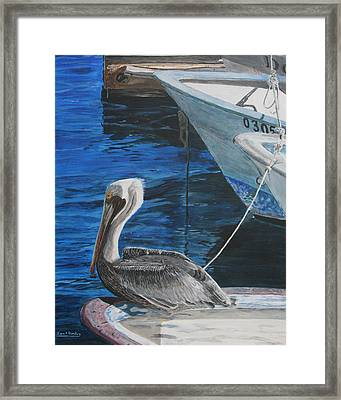 Pelican On A Boat Framed Print
