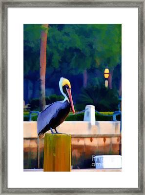 Pelican On Post Artistic Framed Print by Dan Friend