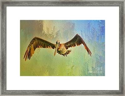 Pelican On Texture Framed Print