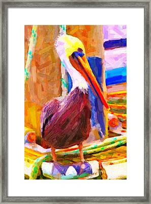 Pelican On The Dock Framed Print