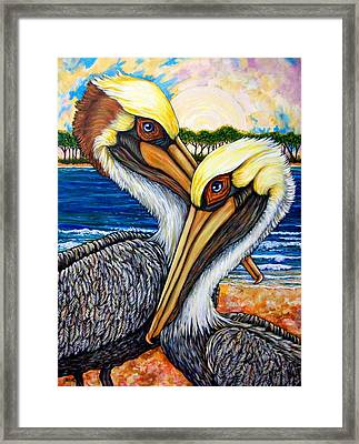 Pelican Pair Framed Print by Sherry Dole
