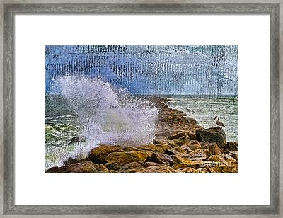 Pelican Pier Perch Framed Print by Deborah Benoit