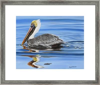 Pelican Ripples Framed Print by Phyllis Beiser