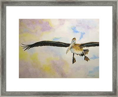 Framed Print featuring the painting Pelican by Stan Tenney